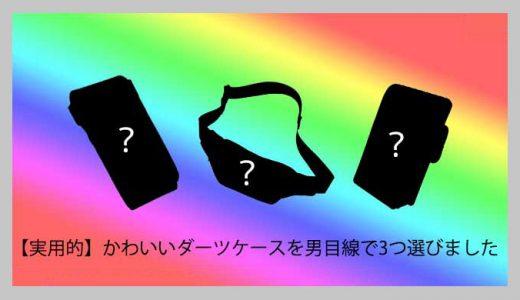 【実用的】かわいいダーツケースを男目線で3つ選びました【男が思うカワイイはこれ】